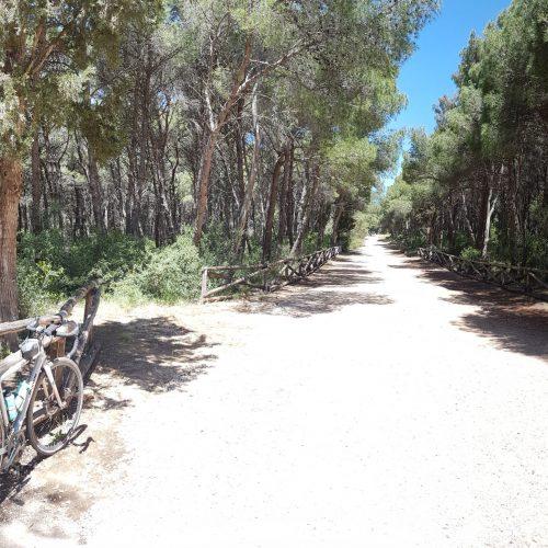 Il sentiero nel parco di Porto Selvaggio
