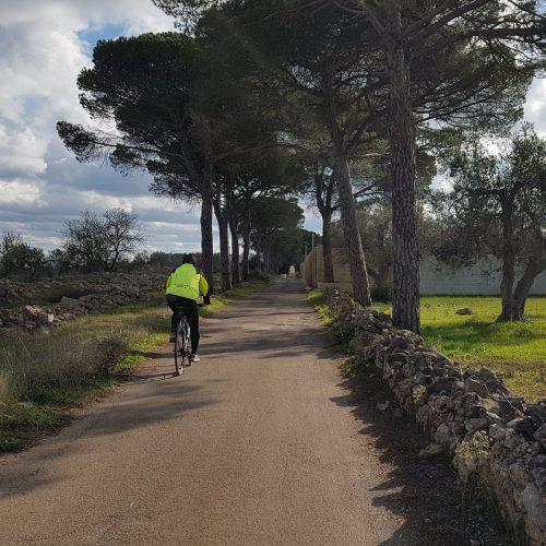 In bici sulla serra di Parabita
