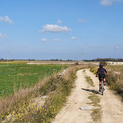Il sentiero che solca la campagna di Rauccio